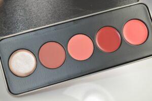 Stila Color Me Pretty Convertible Color Lip & Cheek Palette Review/Swatches 3