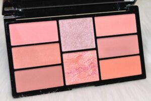 Freedom Pro Blush and Highlight Palette