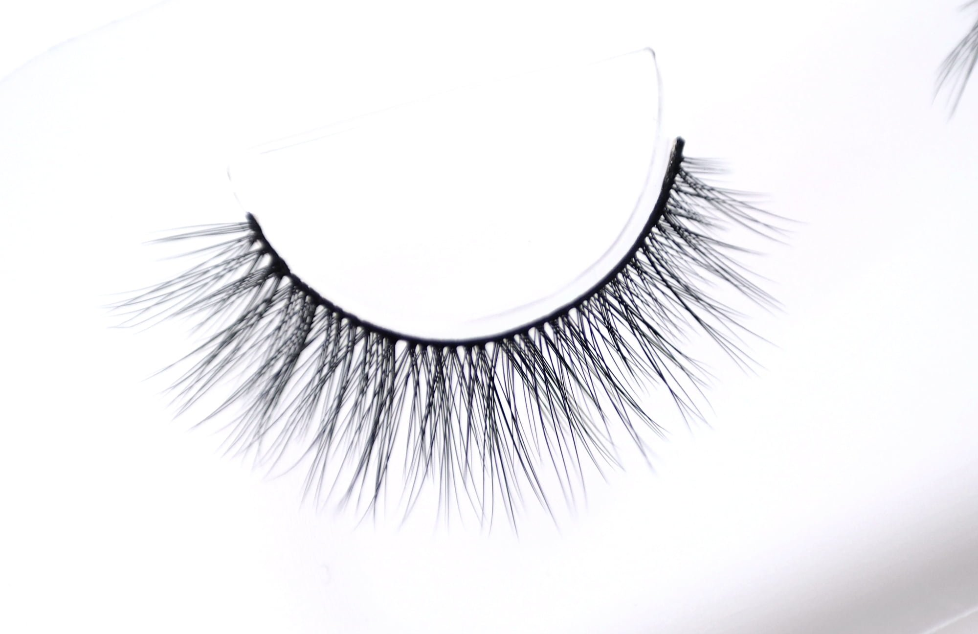Esqido Brand Spotlight - Synthetic False Lashes, Lash Glue and Eyeliners Review and Swatches