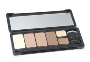 Profusion Contour Makeup Case Review and Swatches