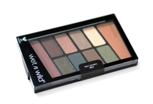 Wet n Wild Color Icon Eyeshadow Palette in the shade Comfort Zone Review and Swatches