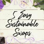 5 Easy Sustainable Swaps