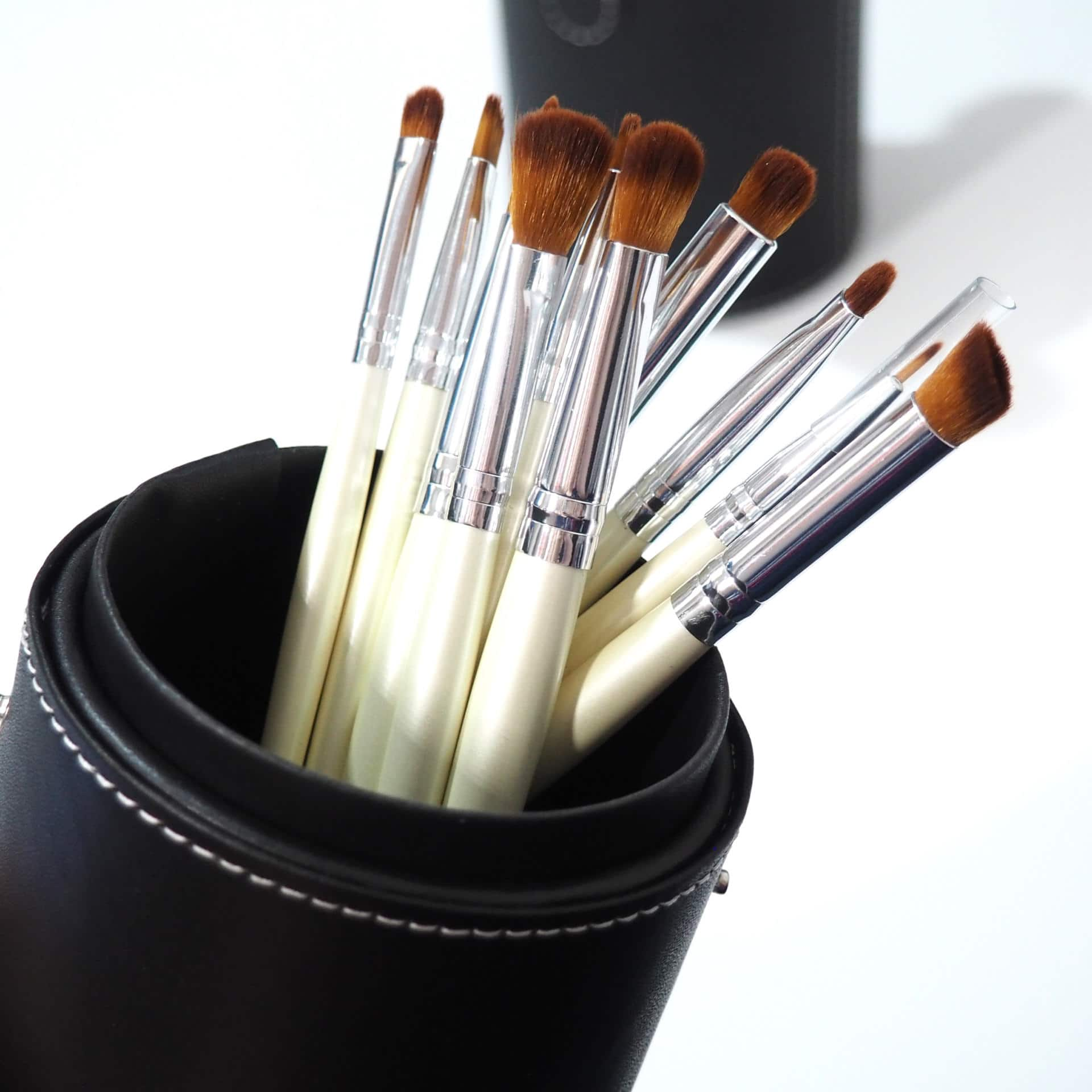Coastal Scents Pearl 16 Piece Brush Set Review